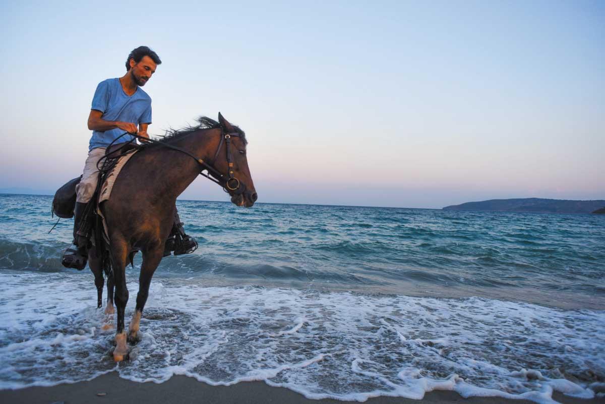 Στην Ανδραβίδα καβάλα στ' άλογο - 83η Ιππική έκθεση
